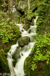 Adirondack Spring Waterfalls