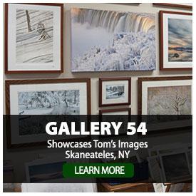 Skaneateles Gallery